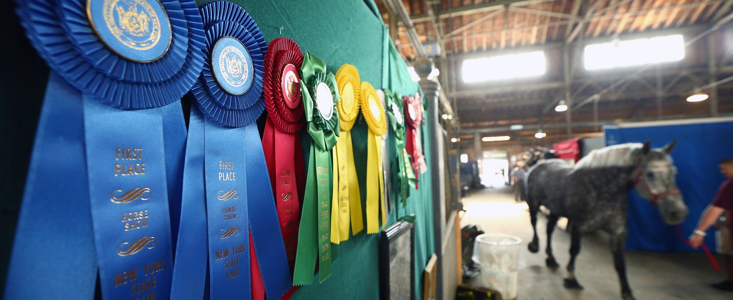 <div class='slides_user_inputted'> <a href='https://nysfair.ny.gov/competitions/results/'>  <h2 class='hero_title'> Who was a Winner in 2017?</h2>  <h4 class='hero_sub_title'>The Results Are In!</h4>  <p class='hero_link'>FIND OUT HERE</p>  </a></div>